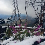 August 2016 – First Snow on Windy